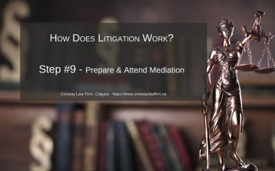 Prepare & Attend Mediation – The Mediator Role – Step #9 in MVA Litigation